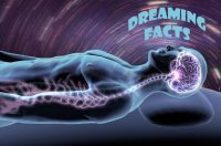 Dreaming facts