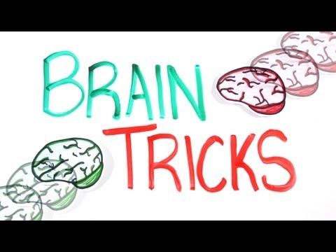a description of how a human brain works Discover how your brain controls your body and houses your mind  bbc science  human body & mind  the body  organs  physical description:.
