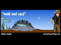 What is a fossil? Educational