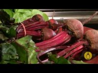 How to cook beetroots? Tutorial healthy cooking and eating well