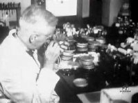 Alexander Fleming, the inventor of penicillin, educational